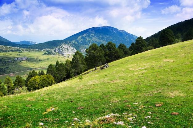 Verão, vista, montanha, prado Foto gratuita