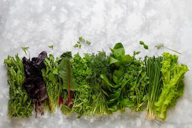 Verduras frescas manjericão, coentro, alface, manjericão roxo, coentro da montanha, endro, cebola verde em caixas plásticas em concreto cinza Foto gratuita