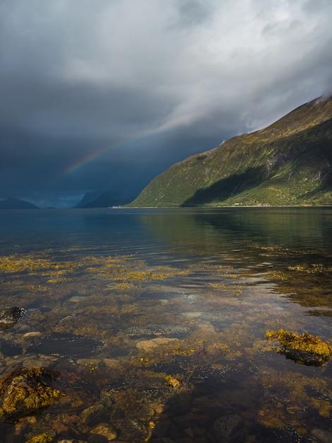 Vertical do musgo na água transparente do lago e um arco-íris no céu nublado Foto gratuita