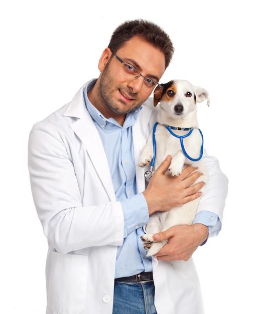 Veterinário e cão Foto Premium