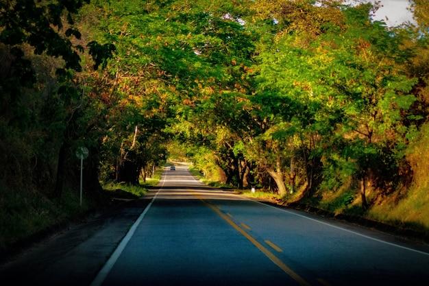 Viajar na estrada Foto Premium