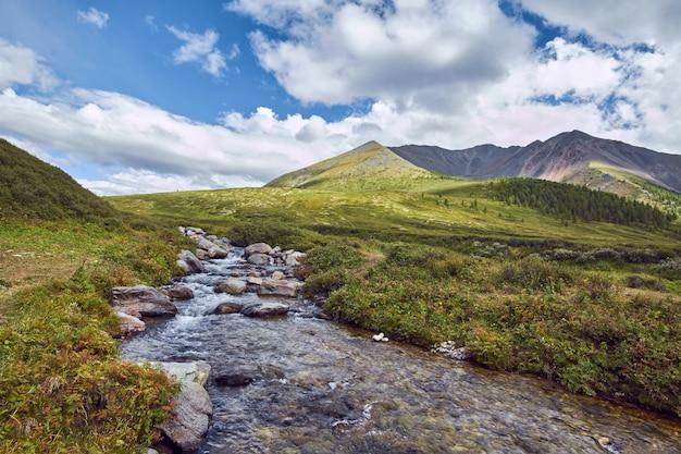 Viaje a pé pelos vales das montanhas. a beleza da vida selvagem. altai, o caminho para os lagos shavlinsky. caminhada Foto Premium