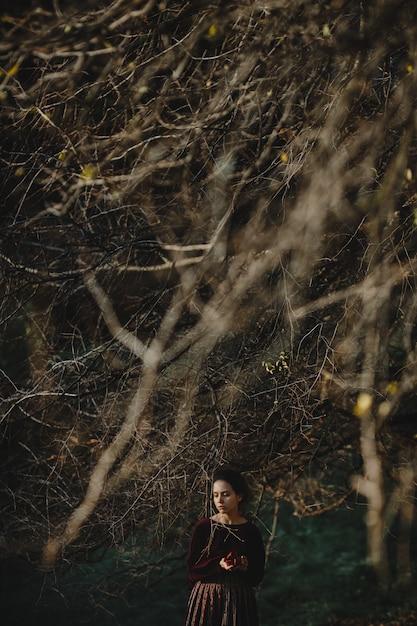 Vibes de outono. estilo gótico. morena, morena, escuro, vermelho, pano Foto gratuita