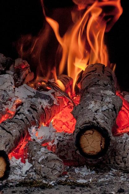 Vidoeiro ardente vívido quente entra na lareira em um dia frio de inverno Foto Premium