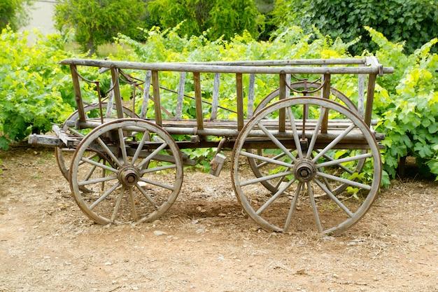 Vinho velho carrinho de cavalos de madeira no campo da uva Foto Premium