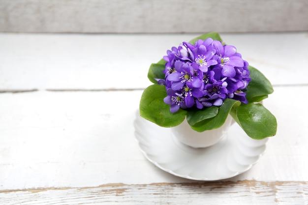 Violetas flores sobre fundo de madeira Foto Premium