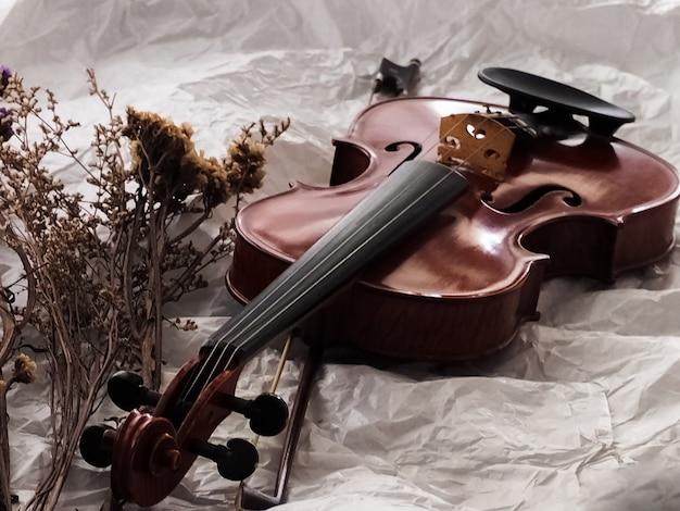 Violino e arco colocar ao lado de flor seca no fundo Foto Premium