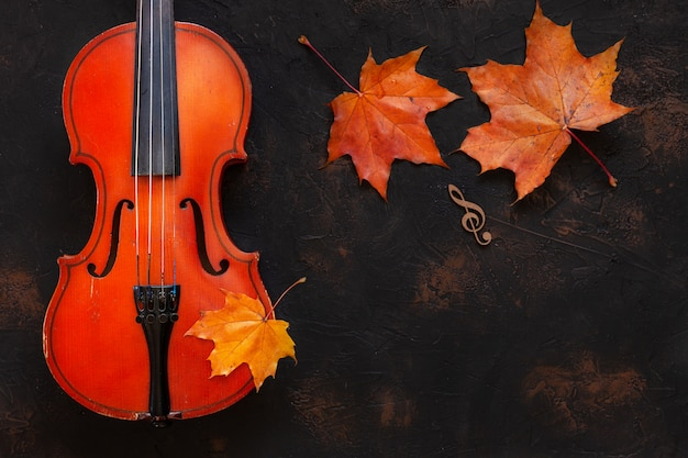 Violino velho com licença amarela do bordo do outono. Foto Premium