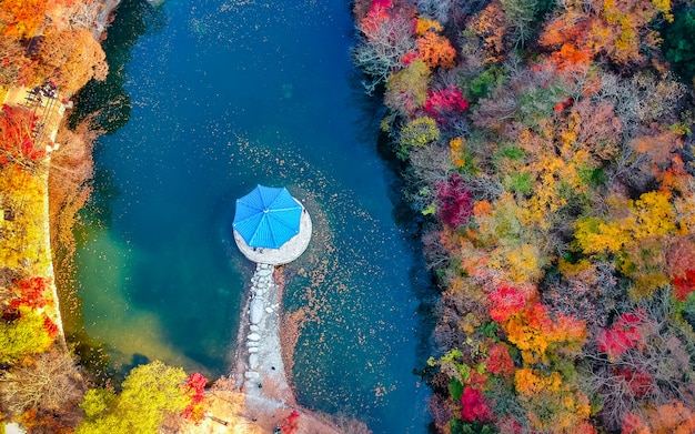 Vista aérea bonita do parque nacional naejangsan da estação do autum, coreia do sul. Foto Premium