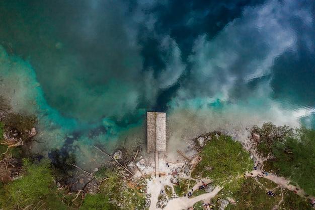 Vista aérea da floresta do lago Foto gratuita
