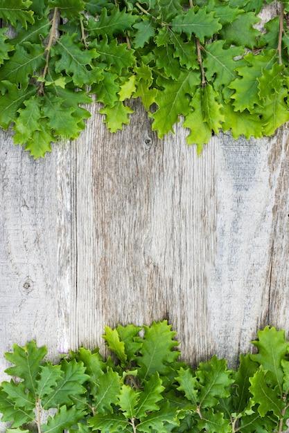 Vista aérea de bolota fresca deixa sobre a superfície de madeira velha Foto gratuita