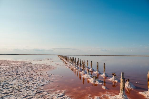 Vista aérea, de, cor-de-rosa, lago, e, praia arenosa Foto Premium