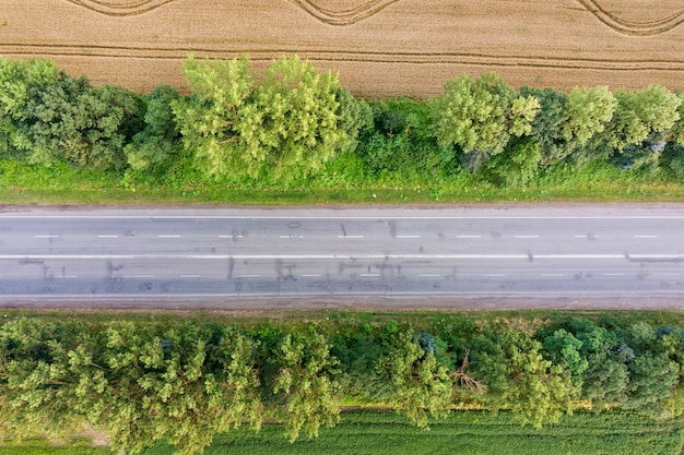 Vista aérea de uma estrada entre campos de trigo amarelos e árvores verdes. Foto Premium