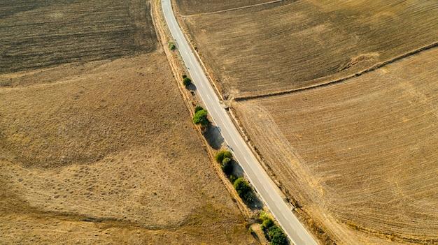 Vista aérea do longo caminho com árvores Foto gratuita