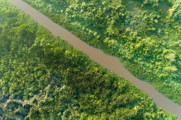 Vista aérea, drone, tiro, cima baixo, de, verde, floresta, e, lago, bonito, natureza selvagem, paisagem, para, fundo Foto Premium