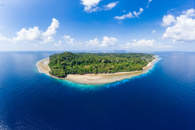 Vista aérea, praia tropical, ilha, recife, mar do caribe Foto Premium