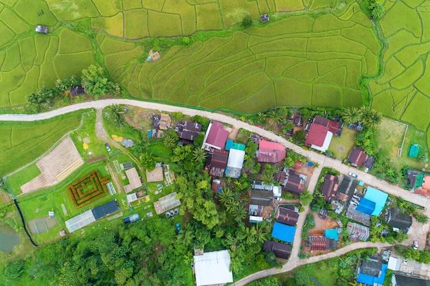 Vista aérea zangão tiro de campos de arroz verde lindo em bela luz da natureza pela manhã e estrada ao redor da vila Foto Premium