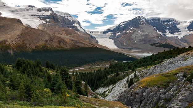 Vista da geleira athabasca da trilha do pico wilcox e floresta de vanguarda e montanhas no parque nacional de jasper, alberta, canadá. Foto Premium