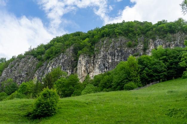 Vista das montanhas de piatra craiului, roménia Foto Premium