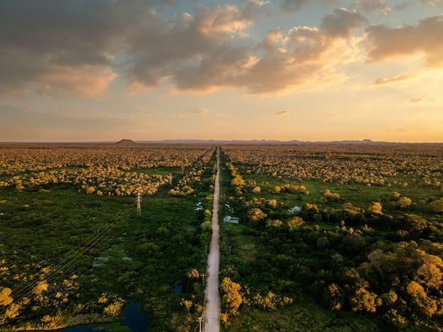 Vista de alto ângulo de uma bela paisagem verde com um caminho sob um céu nublado Foto gratuita
