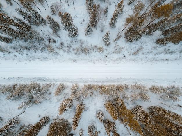 Vista de alto ângulo de uma estrada coberta de neve, cercada por árvores capturadas na finlândia Foto gratuita