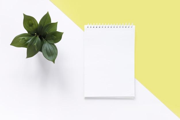 Vista de alto ângulo do bloco de notas em espiral e planta em pano de fundo branco e amarelo duplo Foto gratuita