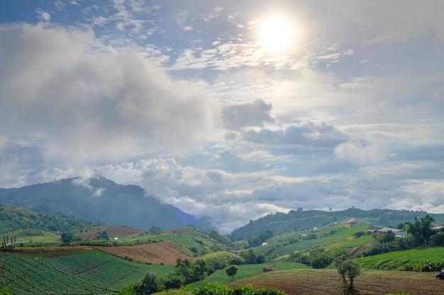 Vista de paisagem de floresta e montanha Foto gratuita