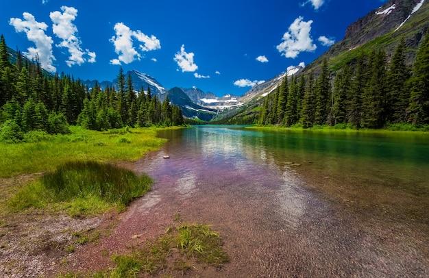 Vista do parque nacional glacier, pinheiros próximos a um rio no inverno nas montanhas rochosas Foto Premium