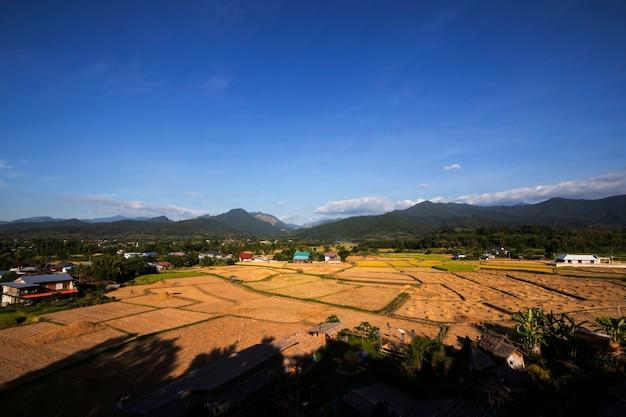 Vista dos campos de arroz e montanha após a colheita no céu azul Foto Premium