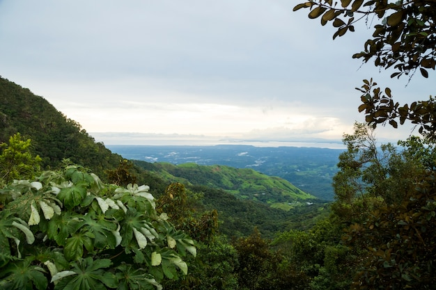 Vista elevada da montanha tropical na costa rica Foto gratuita