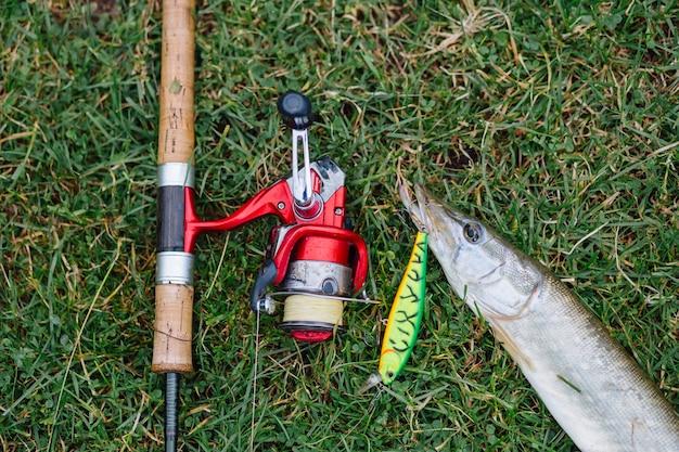 Vista elevada, de, cana de pesca, com, gancho, em, a, peixe, ligado, grama verde Foto gratuita