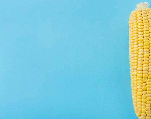Vista elevada, de, cob milho, ligado, azul, superfície Foto gratuita