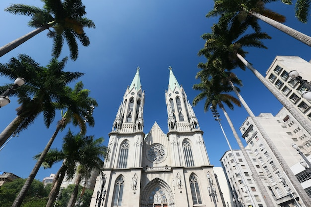 Vista em perspectiva da catedral de são paulo Foto Premium