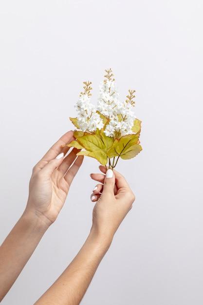 Vista frontal das mãos segurando flores Foto gratuita