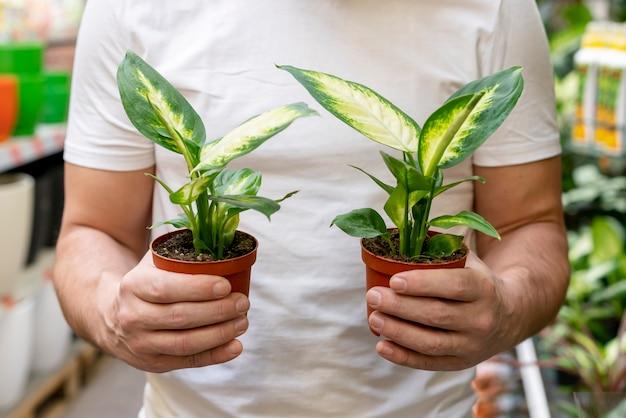 Vista frontal homem segurando plantas pequenas Foto gratuita