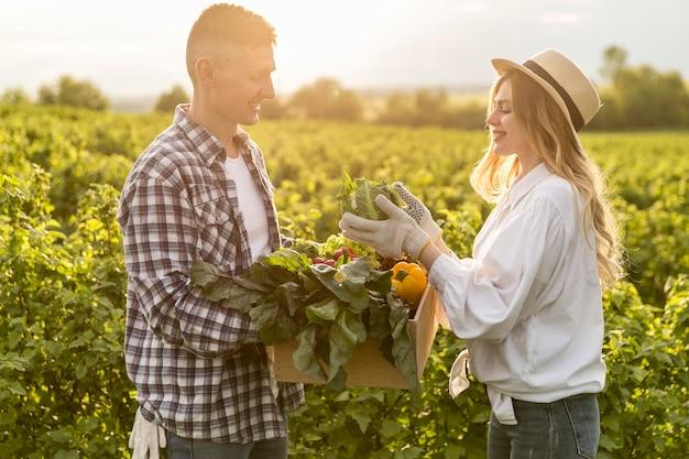 Vista lateral casal coletando legumes Foto Premium