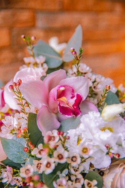 Vista lateral da íris de flores Foto gratuita