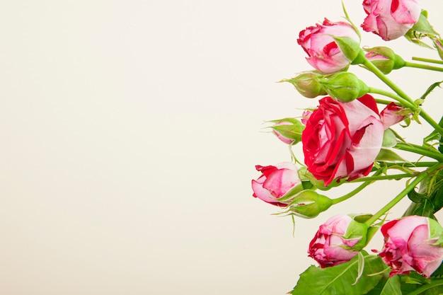 Vista lateral de um buquê de flores rosas coloridas com botões de rosa em fundo branco, com espaço de cópia Foto gratuita