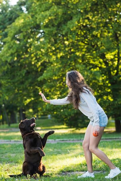 Vista lateral, de, um, mulher, tendo divertimento, com, dela, cão, em, jardim Foto gratuita