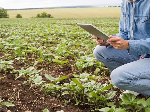 Vista lateral mulher verificando suas plantas com espaço de cópia Foto Premium