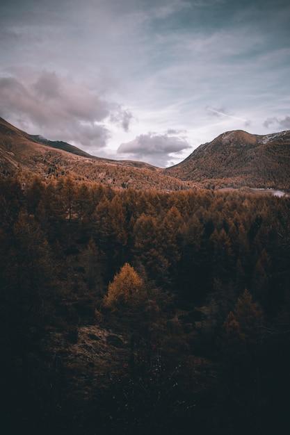 Vista nas montanhas nebulosas dos alpes no outono Foto Premium