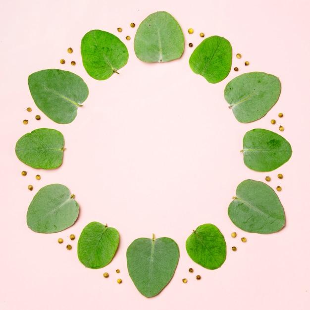 Vista superior coleção de folhas verdes em fundo rosa Foto gratuita