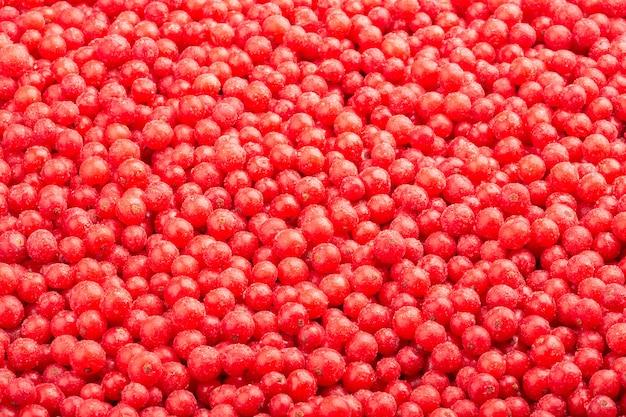 Vista superior congelada de groselha vermelha. Foto Premium