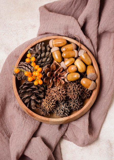 Vista superior da bola de outono com pinhas e bolotas Foto gratuita