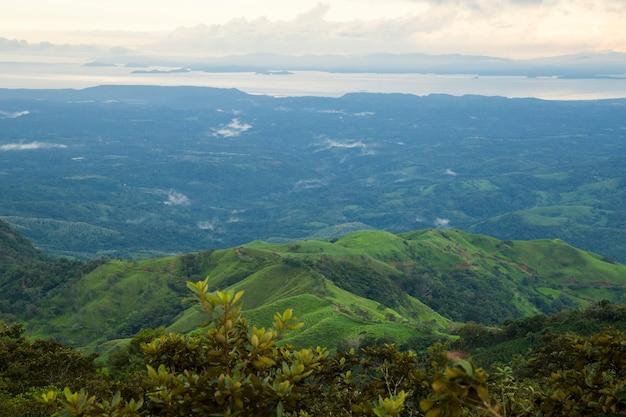 Vista superior da floresta tropical em tempo chuvoso Foto gratuita