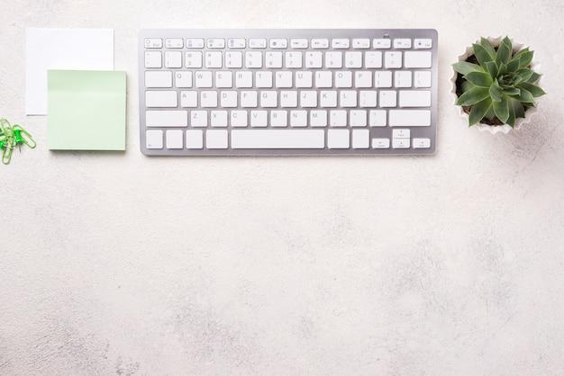 Vista superior da mesa organizada com teclado e planta suculenta Foto gratuita