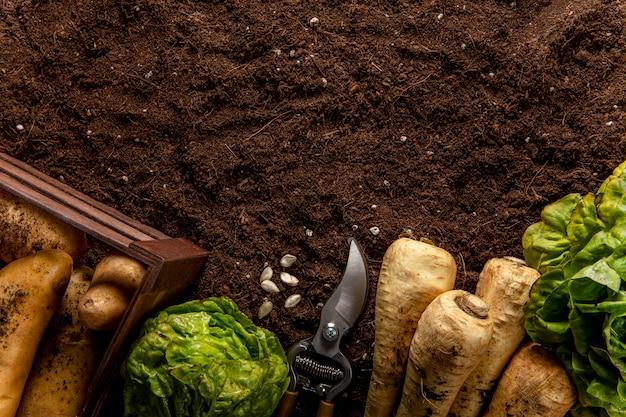 Vista superior da salada com legumes e espaço para texto Foto gratuita