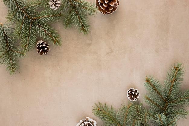 Vista superior das folhas de pinheiro e cones de coníferas Foto gratuita