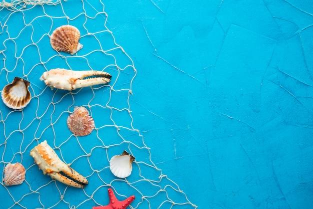 Vista superior de amêijoas e lagosta na rede de pesca Foto gratuita