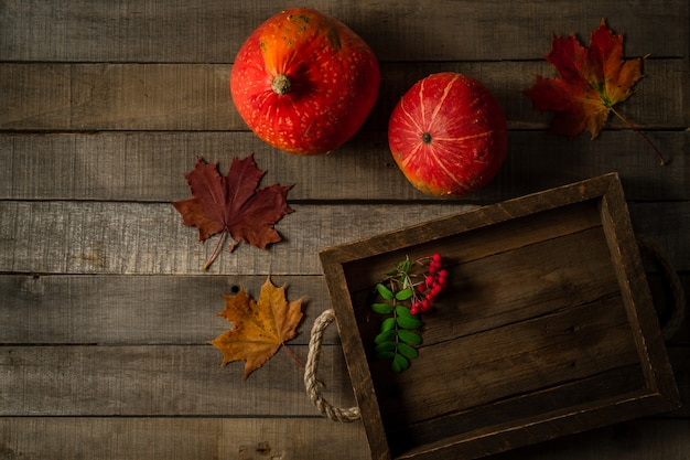 Vista superior de duas abóboras de outono, folhas de bordo e ramo de bagas de rowan Foto Premium